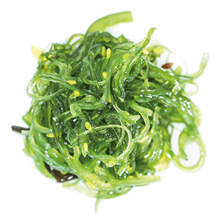 A photo of some seaweed